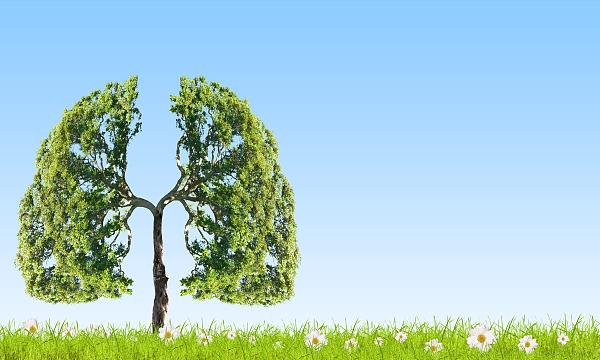 """冬季养肺,学学""""呼吸三法"""""""
