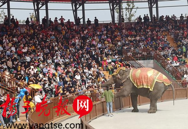来自五大洲的30多种野生动物让游客一日看尽世界珍奇,亚洲森林,美洲